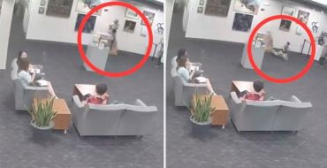 Un enfant casse une statue, on réclame 132.000 dollars aux parents