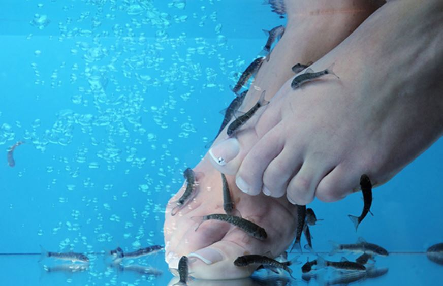 Elle perd ses ongles d'orteils après une pédicure avec des poissons