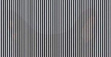 Illusion d'optique : Quel animal se cache derrière ces lignes noires et blanches ?