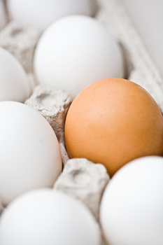 different-egg