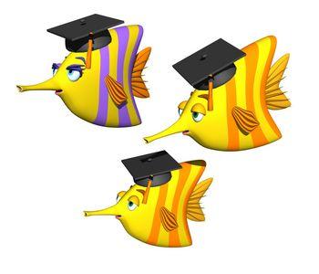 graduating fish