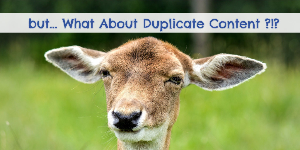 What about duplicate content penalties when you're using PLR content for your blog posts?  Here's the answer.
