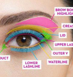 eye shadows potpourri of whatever diagram furthermore eye makeup placement moreover how to apply eye [ 1280 x 959 Pixel ]
