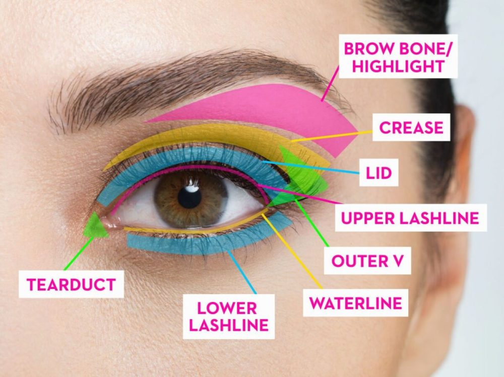 medium resolution of eye shadows potpourri of whatever diagram furthermore eye makeup placement moreover how to apply eye