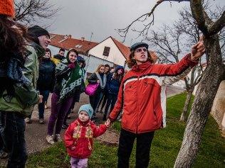 Komentování stavu jednotlivých stromů