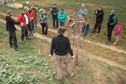 Úvodní zaškolení prvních příchozích při výsadbě hrušňového stromořadí.