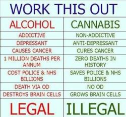 cannabis-vs-alcohol