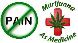 Marijuana Cannabis drug addiction