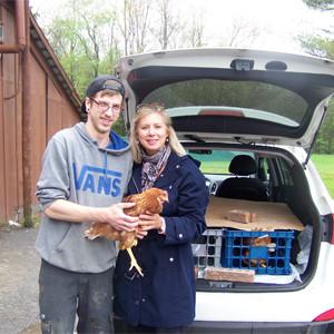 Comment acheter des poules