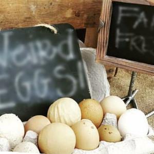 Pourquoi est-ce que mes œufs sont bizarres?