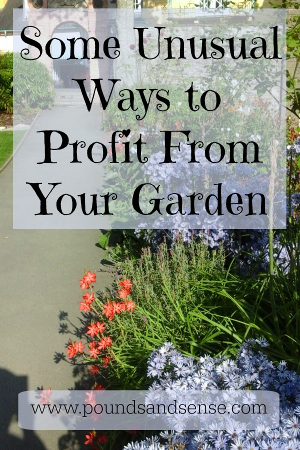 Some Unusual ways to Profit from Your Garden