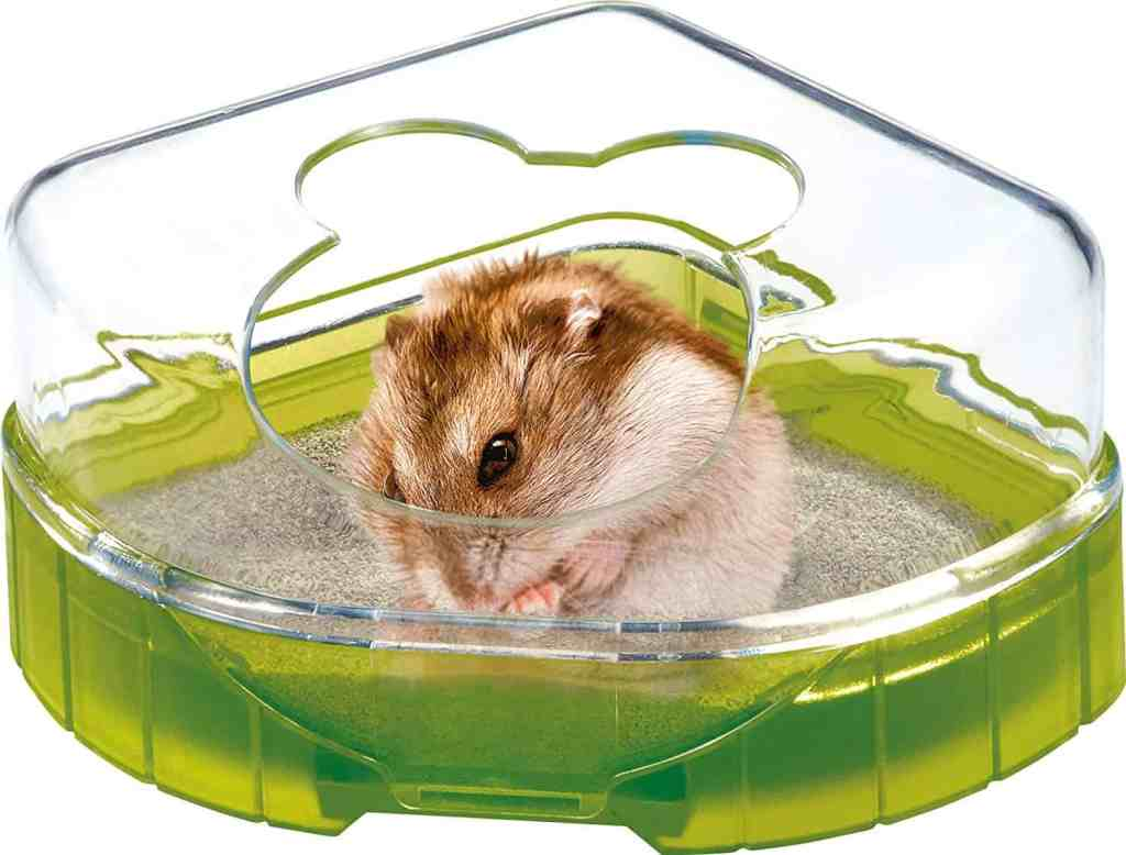 toilette pour hamster, hygiène et santé pour rongeur.