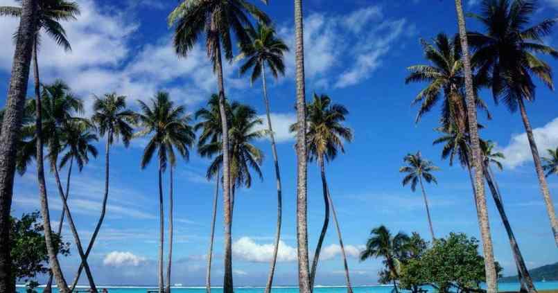 Lagon de Temae, qui fait aussi office de piscine municipale, classe d'apprendre à nager ici !! 1