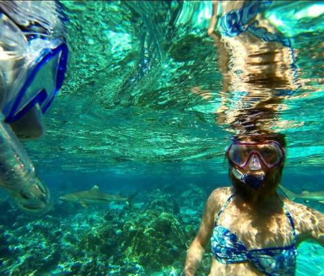 Selfouche requinou 19