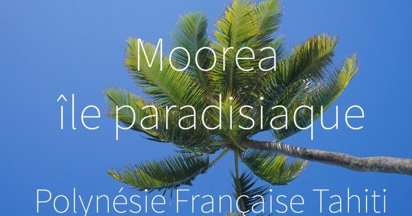 Polynésie Française - Moorea #vidéo 1