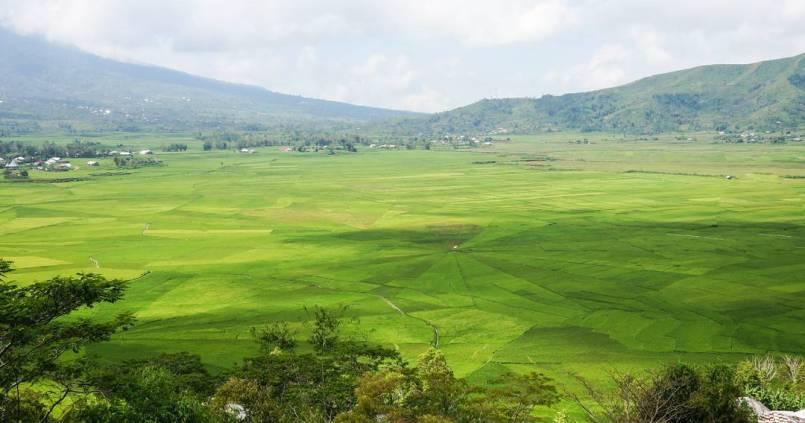 Les rizières en toile d'araignée de Riung à Flores. 1