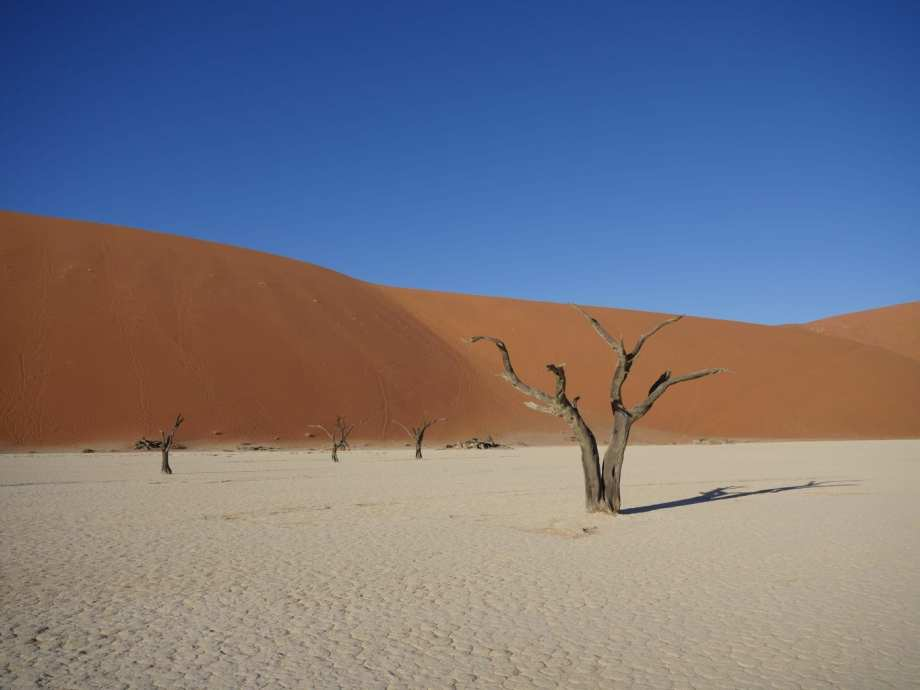 Notre top 5 des plus beaux lodges en Namibie 2