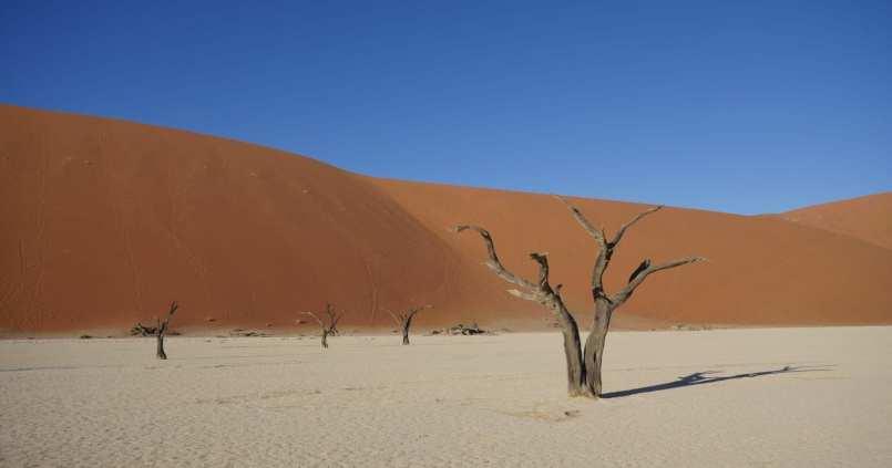 Tourisme en Namibie : les 6 incontournables de notre road trip 33