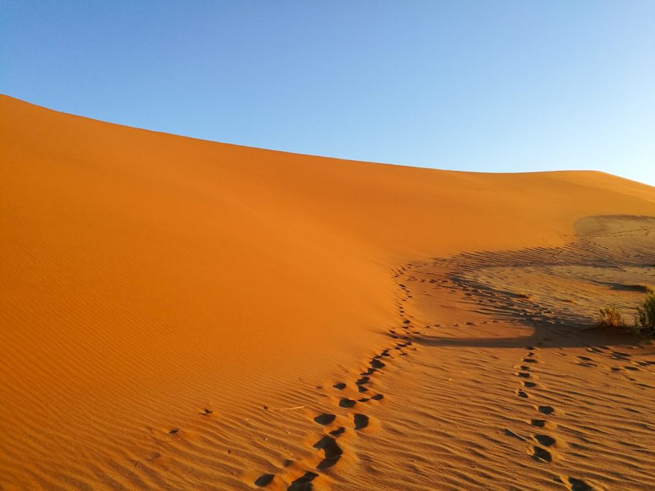 Sesriem : explorer les dunes de Sossusvlei 6