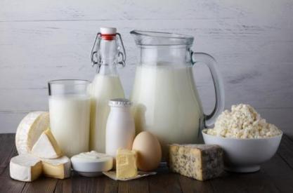 """Résultat de recherche d'images pour """"produit laitiers"""""""