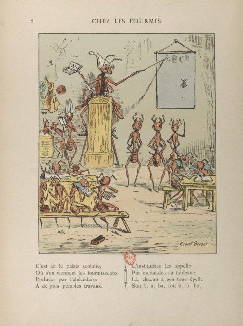Chez les fourmis - Gallica/BNF