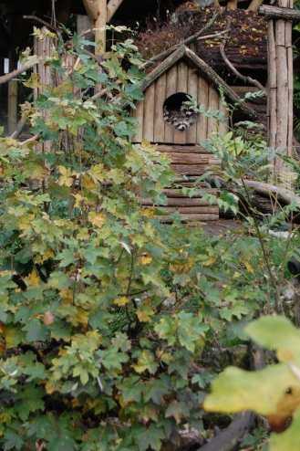 Rien ne vaut la promiscuité d'une cabane en bois...