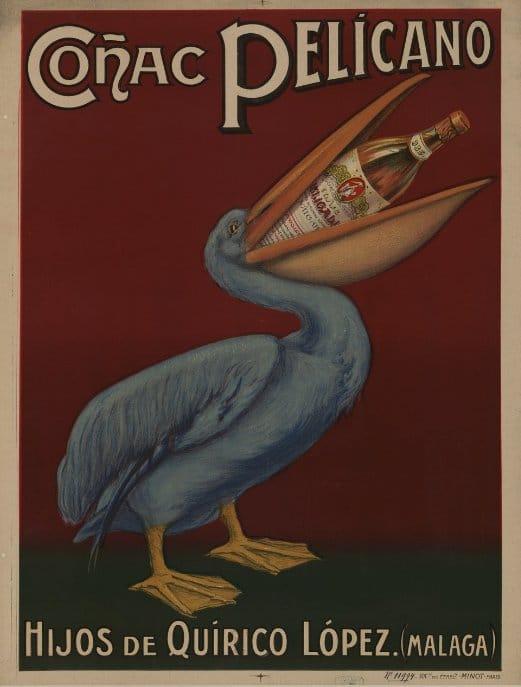 cognac pelicano