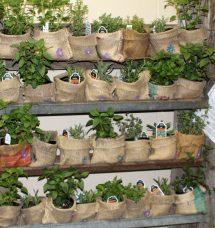 Fascinating And Unique Ideas Portable Gardens
