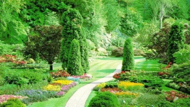 graceful-green-summer-garden-landscape-design-facebook-timeline-cover-photo1366x76866457 Designs Of Landscape Architecture