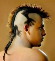 funny and crazy hairstyles
