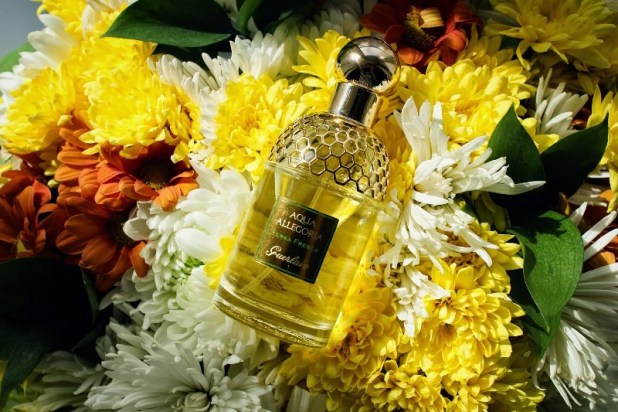 Aqua-Allegoria-Herba-Fresca-Guerlain-for-women-and-men Top 54 Best Perfumes for Spring & Summer 2017
