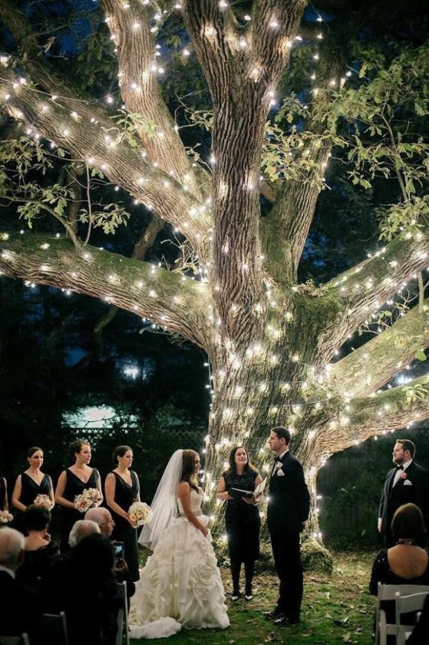 Illuminating-Trees1 10 Best Ideas For Outdoor Weddings in 2017