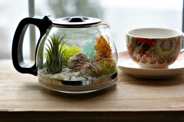 terrarium-3 15 Newest Home Decoration Trends You Have to Know for 2017