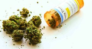 Marijuana Related Illness on the Rise in USA