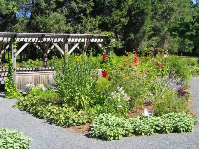 trending 15 garden designs to watch for in 2020