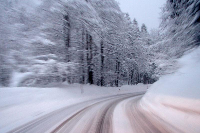 speed-in-white.jpg