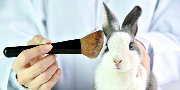 go-cruelty-free-5-make-up-brands-that-are-100-cruelty-free