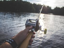 freshwater-sport-fishing-interesting-techniques