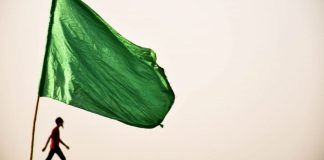 5-simple-green-flags-that-say-a-lot-about-people