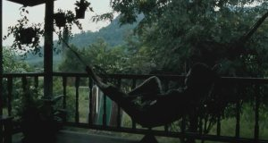 A fascinating Thai film: Uncle Boonmee Who Can Recall His Past Lives (2010)