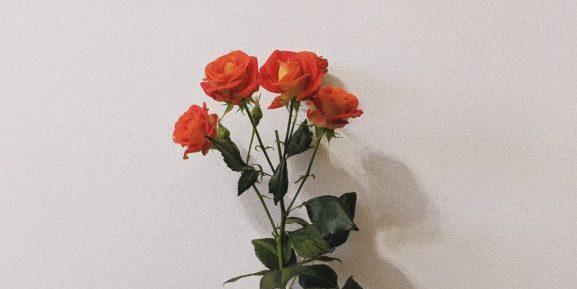 birthday-wishes-june-30th