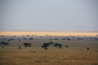 Nekonečné pláne národného parku Serengeti
