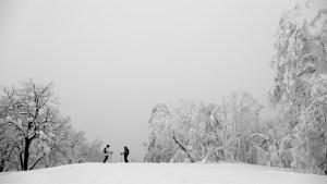 Hokkaido, Japanphoto:Adam Clark