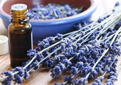 TOP 8 USES FOR LAVENDER!