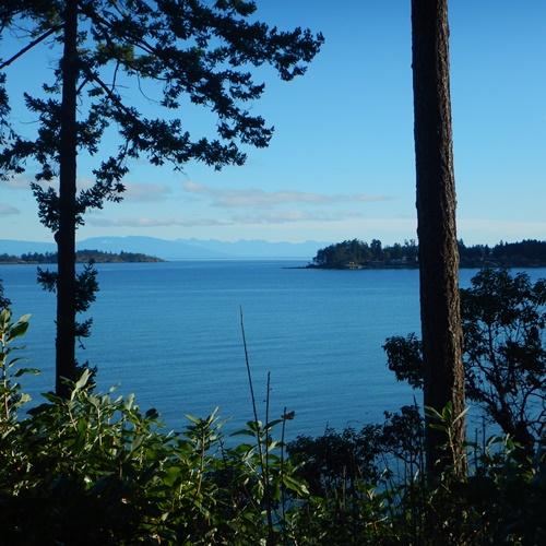 ocean view suite view