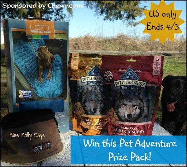 pet adventure prize pack