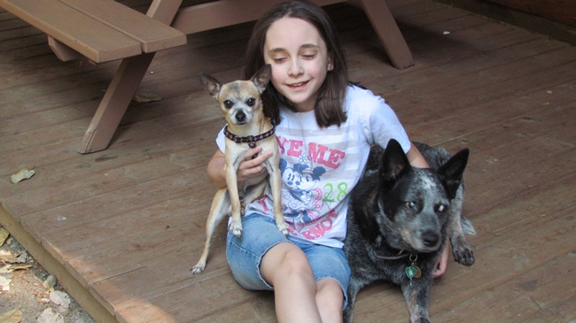 sian and dogs