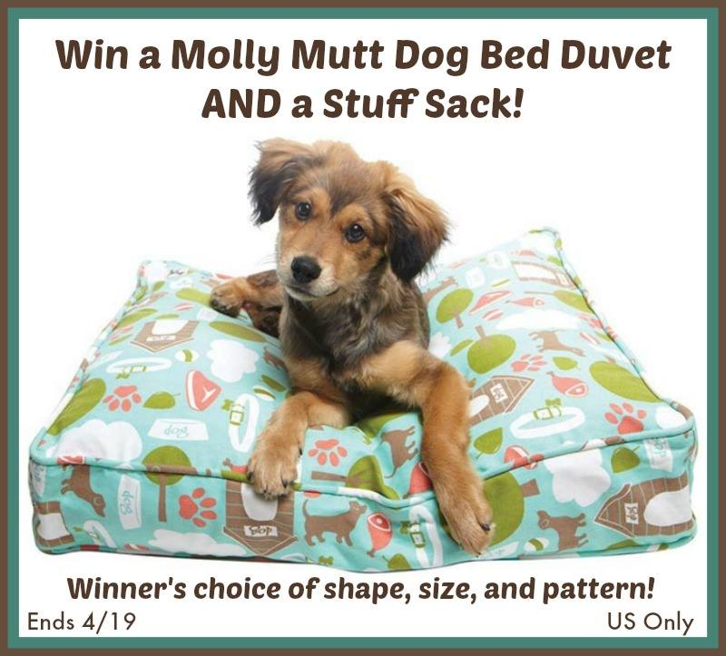 molly mutt dog bed