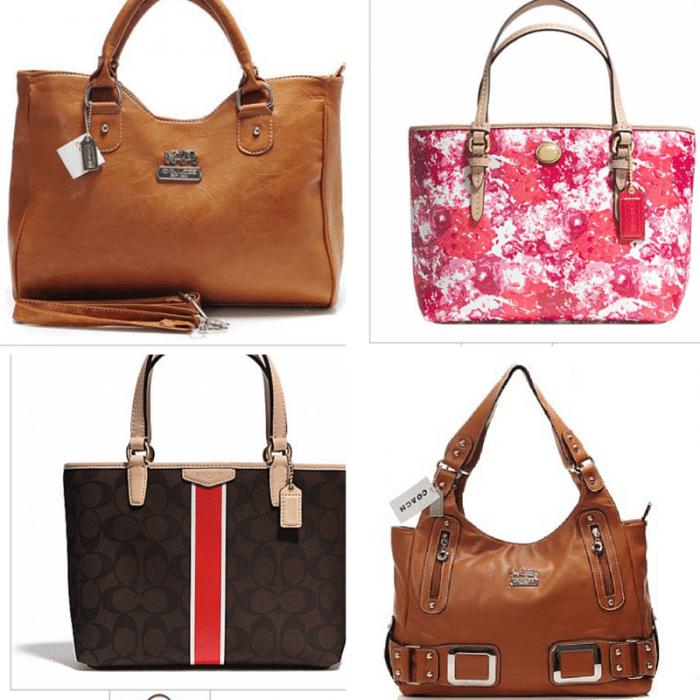 caoch handbag June 2