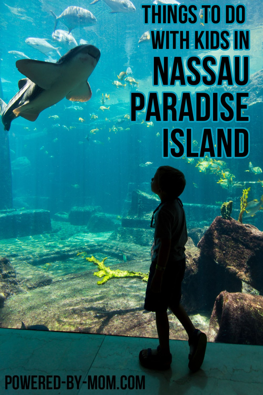 Things to Do With Kids in Nassau Paradise Island